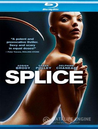 Splice / Химера